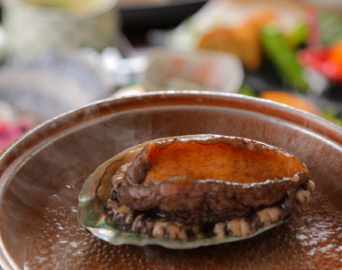 Abalone on ceramic plate