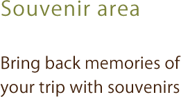 Souvenir area|Bring back memories of your trip with souvenirs